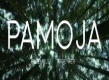 Deborah Lukalu Pamoja Ft Maajabu Artistes mp3 video download